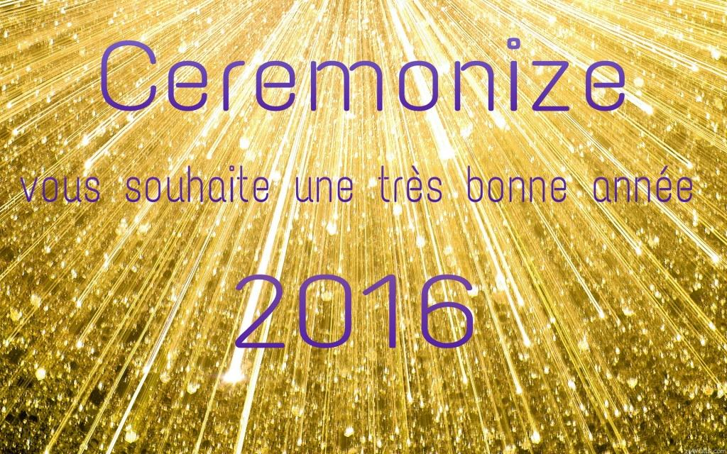 voeux20161